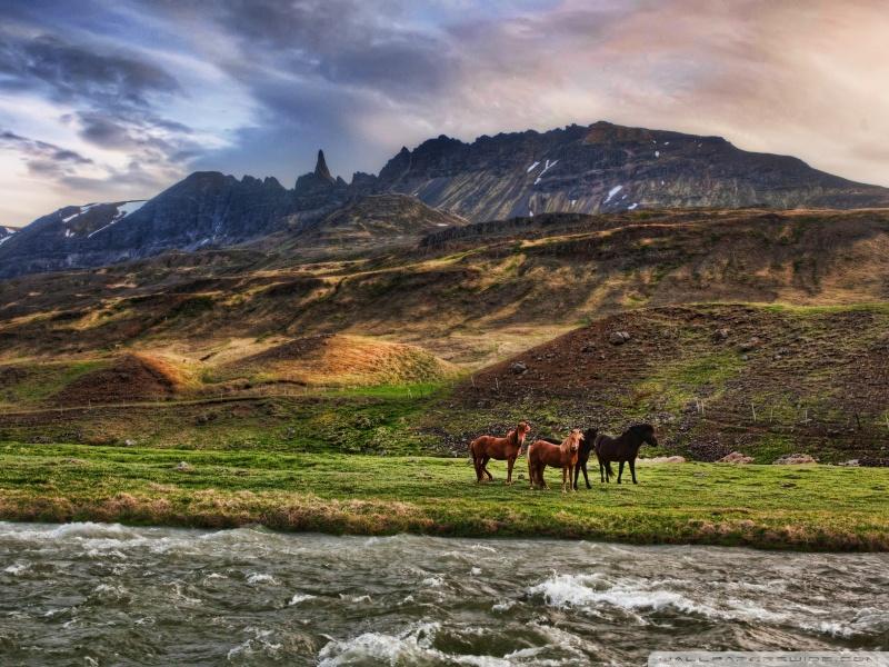 landscape_in_iceland-wallpaper-800x600