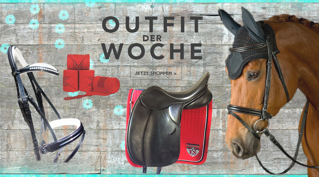 reitoutfit-der-woche-reitsport5