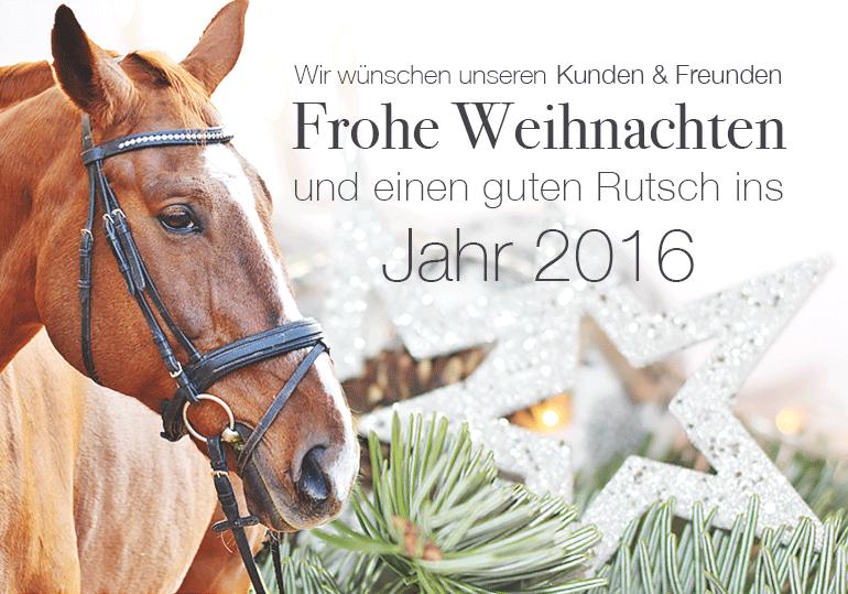 Frohe Weihnachten und einen guten Rutsch ins neue Jahr 2016 ...