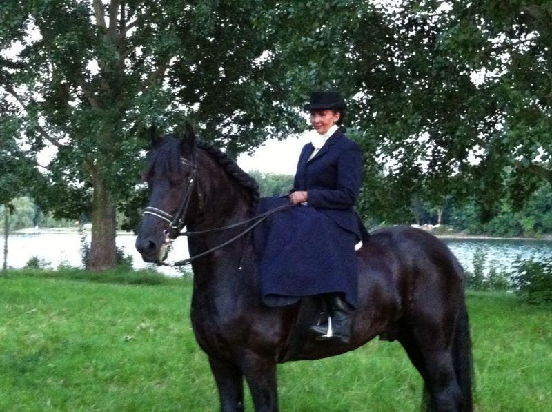Damensattel Pferd