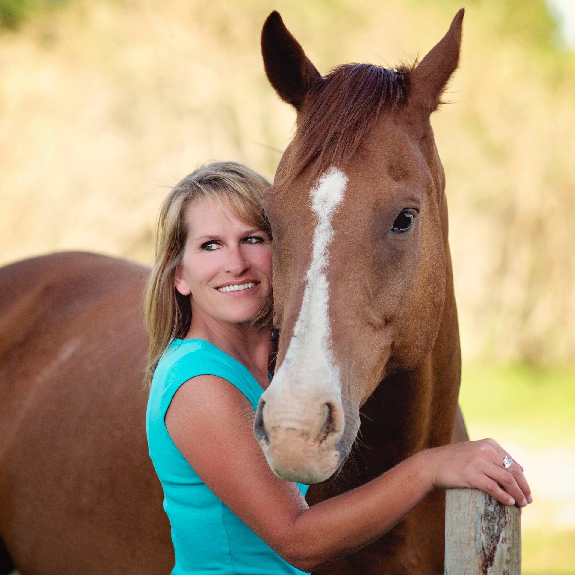 Beruf Pferdewirt Teil 2 – das Leben eines Bereiters