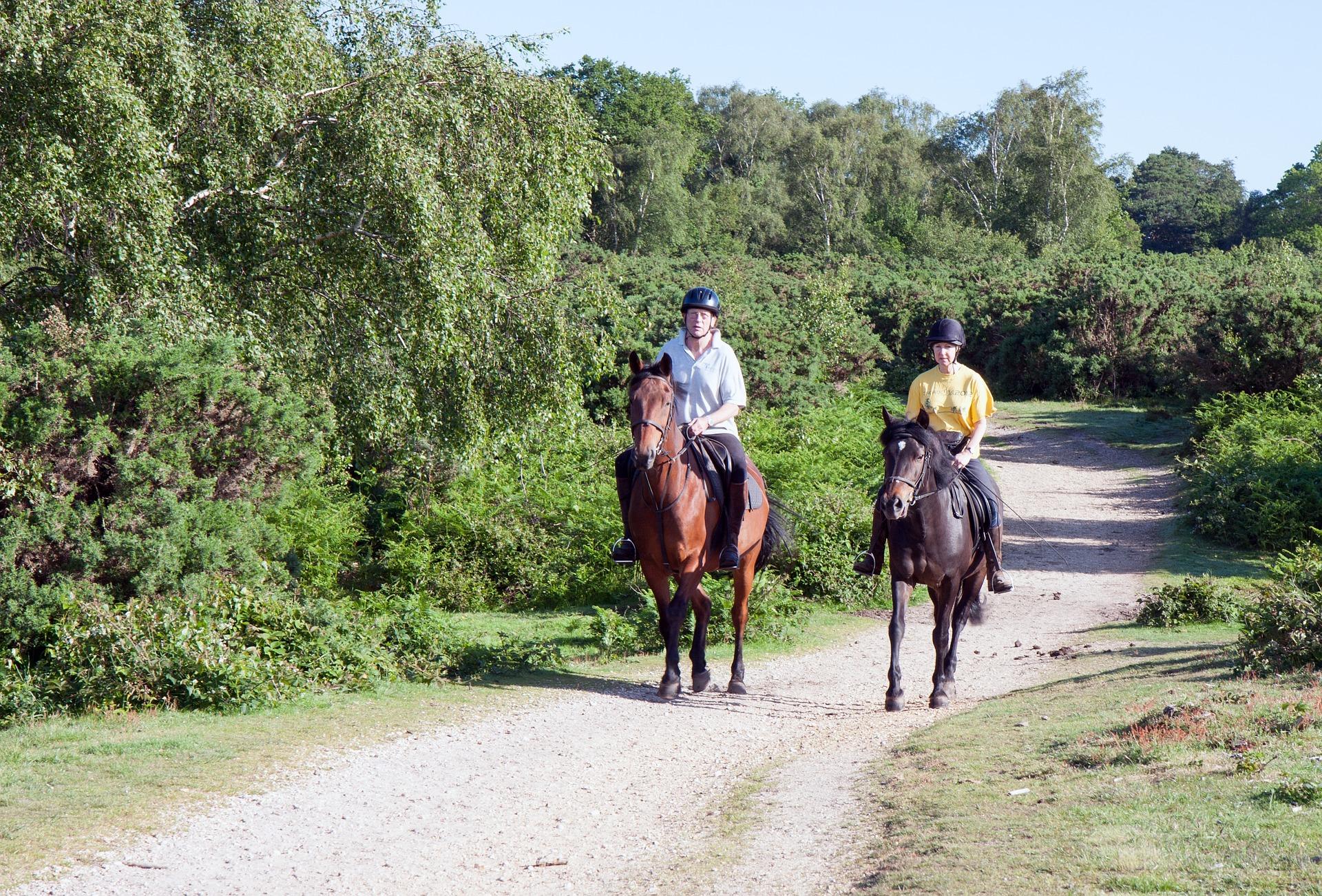 horse-riders-902123_1920