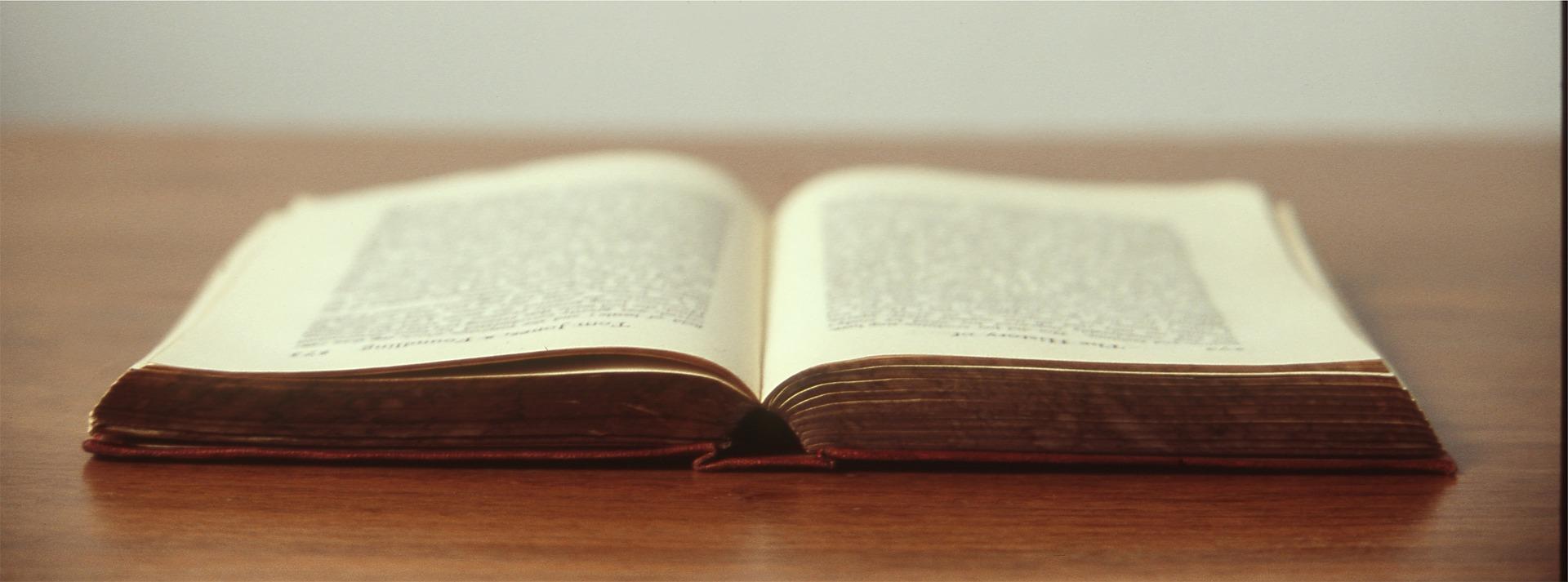 Dieses Buch solltet ihr unbedingt lesen!