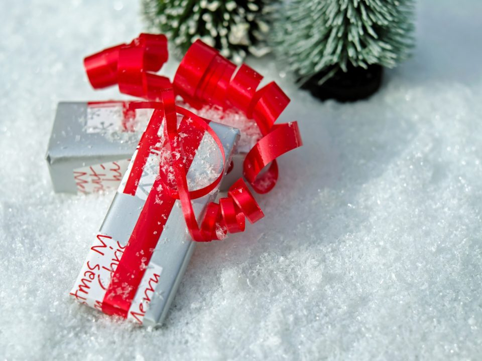 Weihnachtliche Geschenkideen für Pferd & Reiter