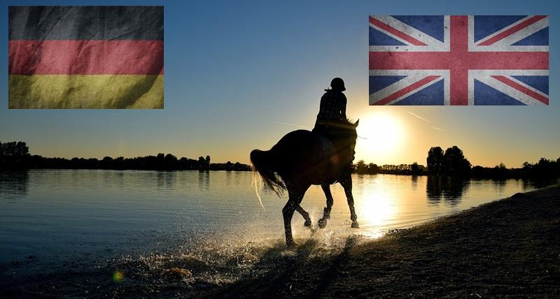 Englische Fachbegriffe rund ums Pferd