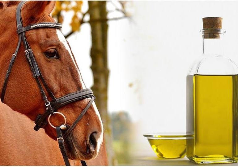 Öl in der Pferdefütterung