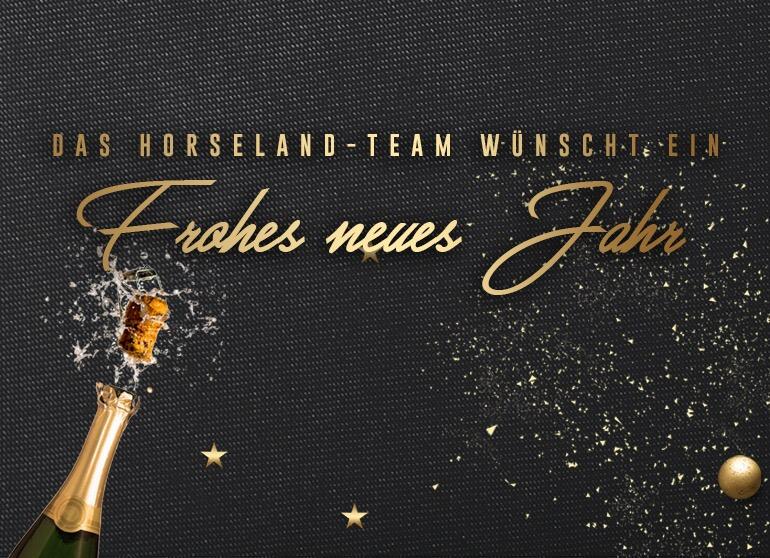 Frohe Weihnachten und eine fröhlichen Rutsch ins 2018 !! - Pferdewiese