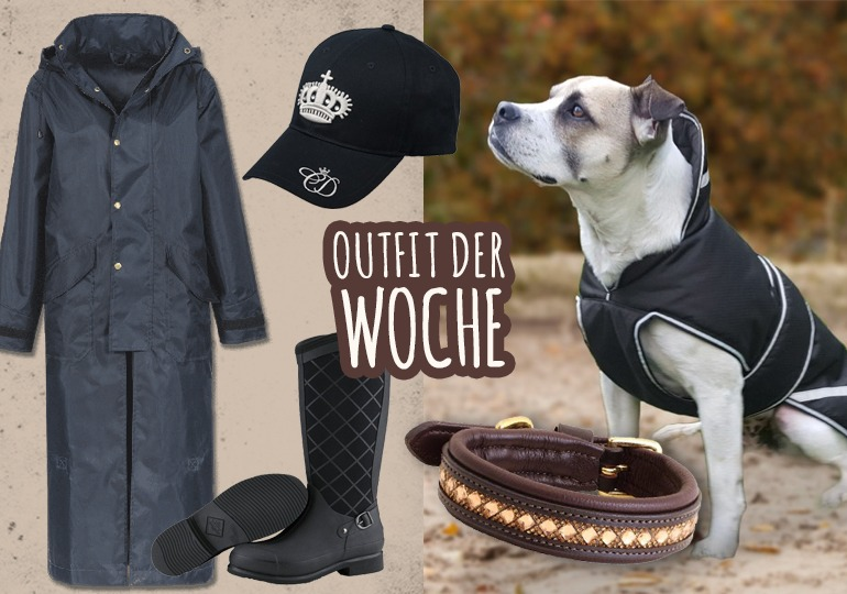 Outfit der Woche: Hund