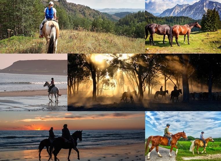 Urlaub mit dem Pferd