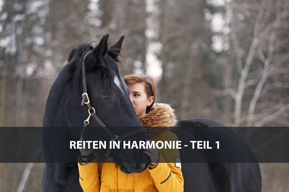Die Serie: Reiten in Harmonie 1 – Fortschritte machen
