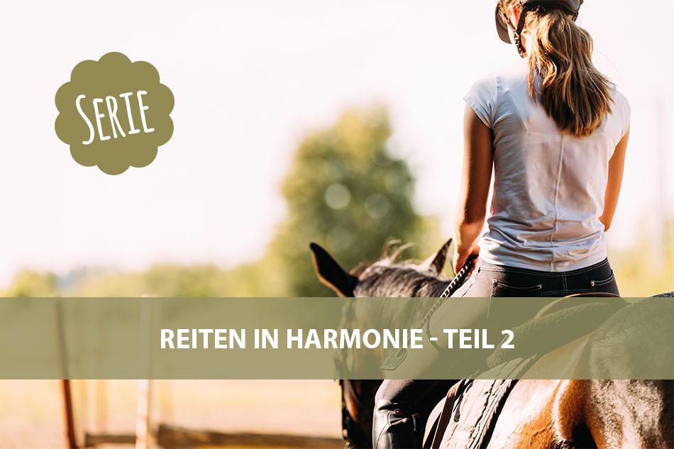Die Serie: Reiten in Harmonie 2 – Mentale Vorbereitung