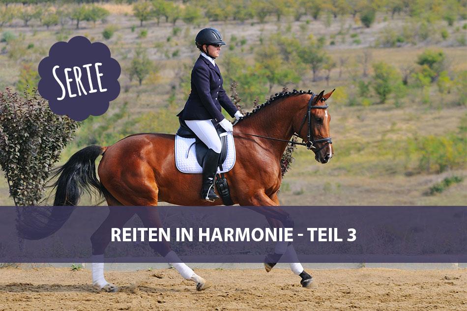 Die Serie: Reiten in Harmonie 3 – (Panorama)Blick
