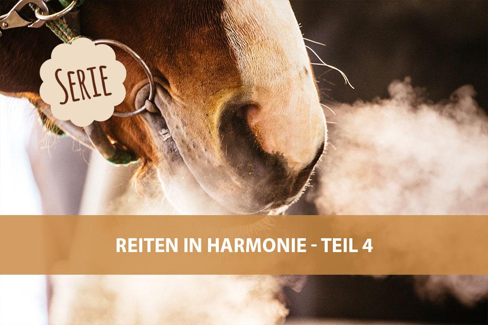 Die Serie: Reiten in Harmonie 4 – Atmung