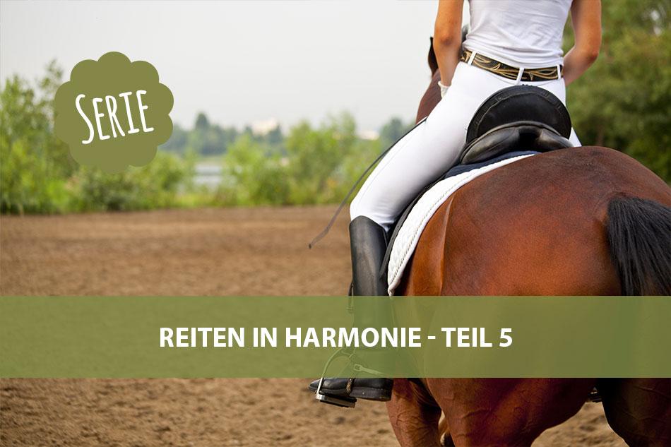 Die Serie: Reiten in Harmonie 5 – der zentrierte Reitersitz
