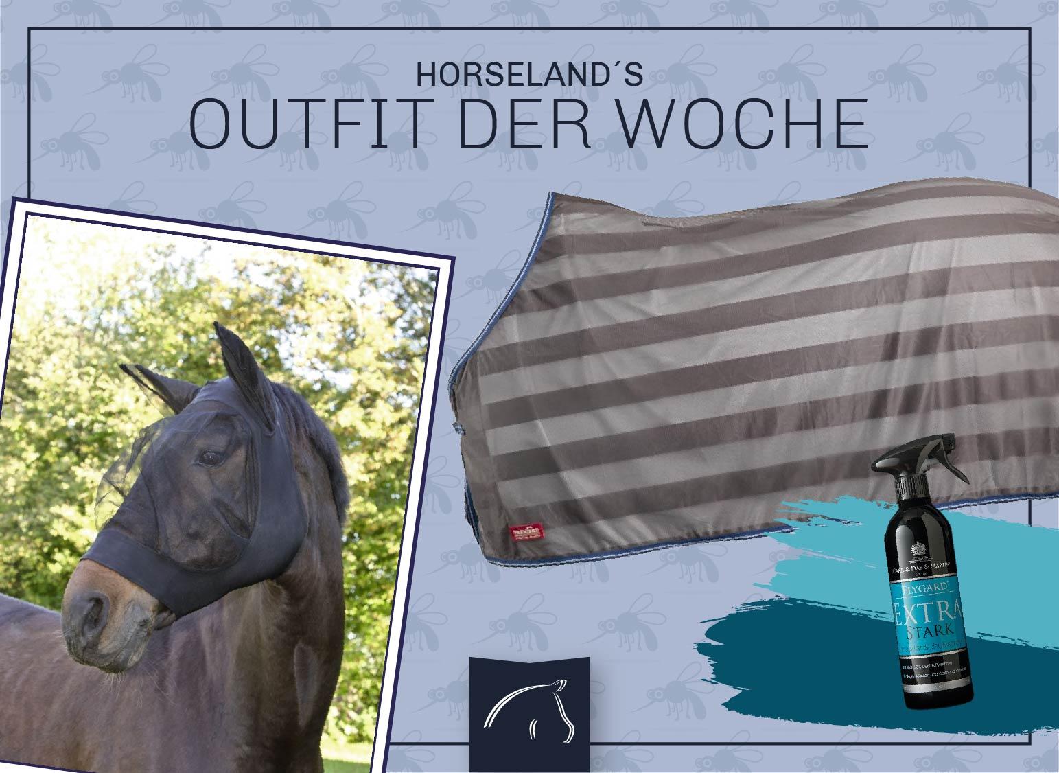 Insektenschutz-Outfit für das Pferd
