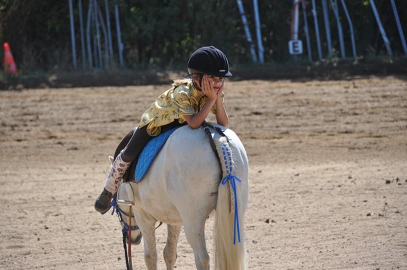 Ponyhof: Teil 2 Mama sein, Familie haben und Pferdebesitzer sein